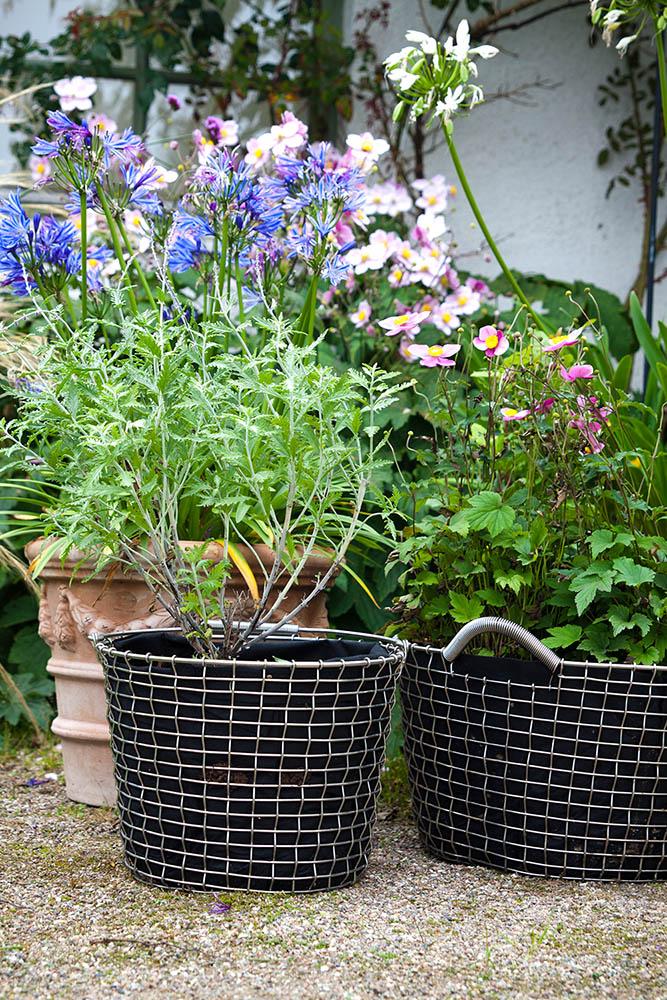 Bucket 24 och Classic 35 korgar med planteringssäckar.