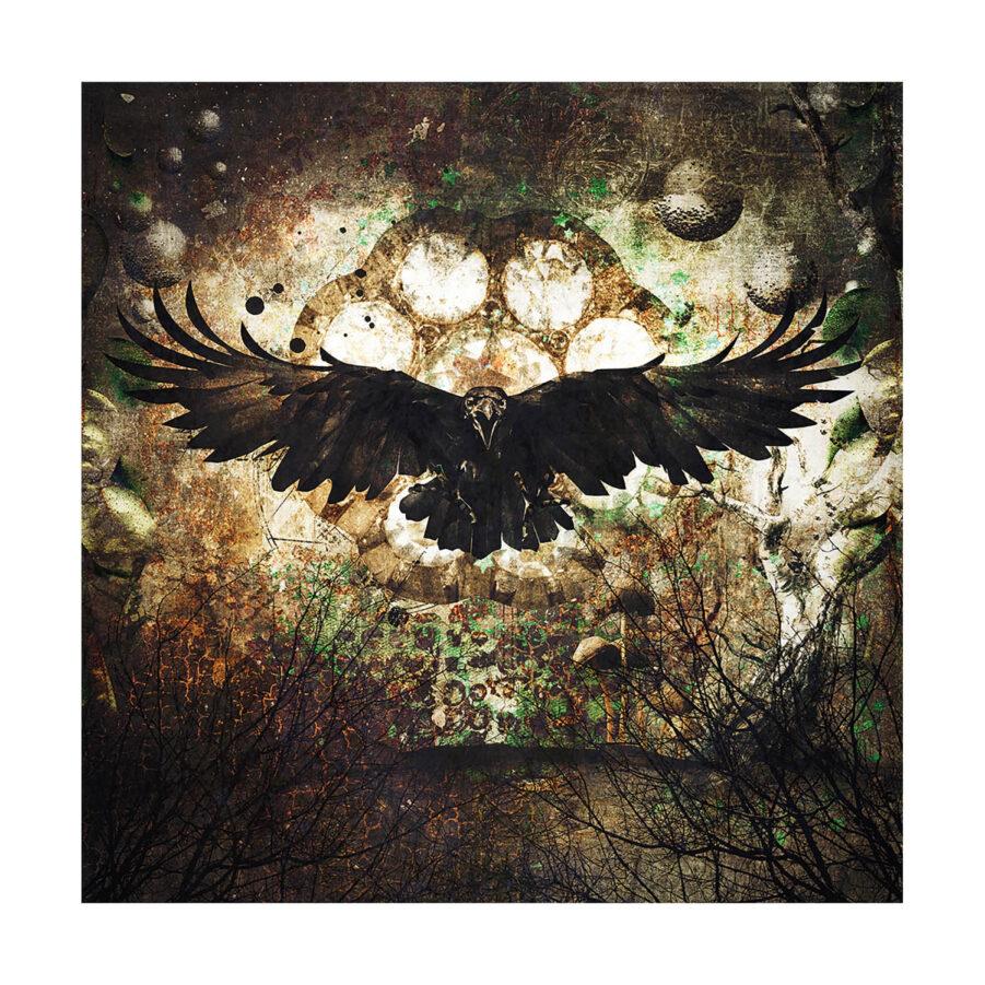 Artwood Raven GN8569 väggdekoration